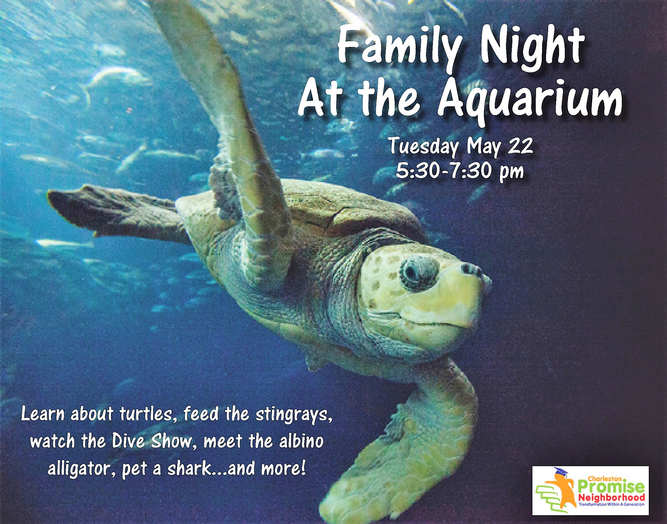 Family Night at the Aquarium